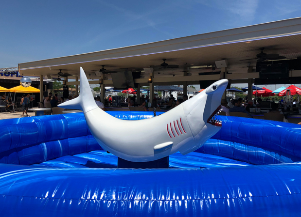 Beach Theme Bat Mitzvah Mechanical Shark Long Island